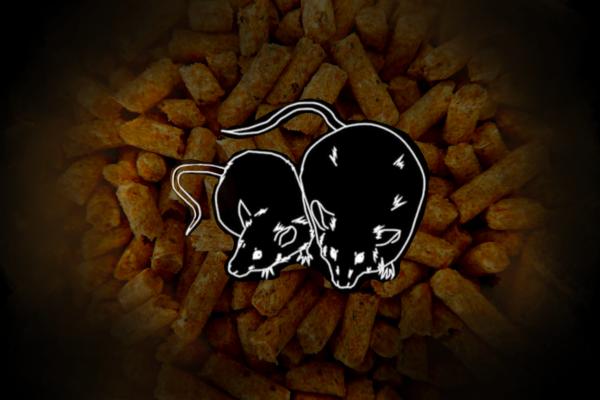 マウス・ラット用の高脂肪食飼料:糖尿病・肥満研究用 High Fat Diet 32(HFD32)のご紹介